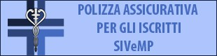 banner polizza 310