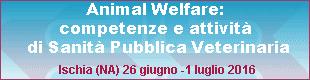 vetmare 2016 3 banner